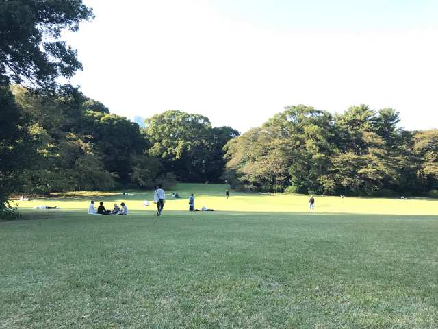 千駄ヶ谷門付近の芝生